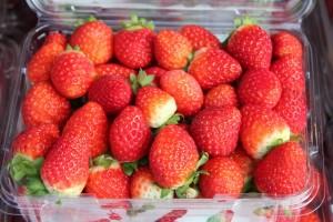 Kookaberry Strawberry Farm