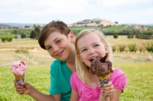 Yarra Valley Chocolaterie & Ice Creamery