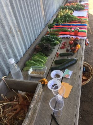 Carome Homestead Produce Swap