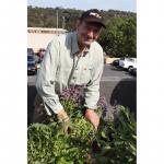 Glenn Mansfield sold silverbeet and seedlings.