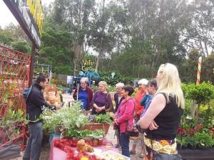 Veggie Swap at BAAG Nursery, Bulleen