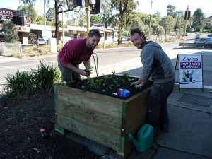 Diamond Creek, Planter Boxes in Chute Street