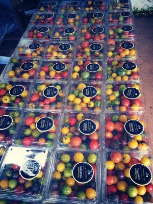 Yarra Valley Gourmet Greenhouse