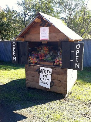 Apted's Orchards