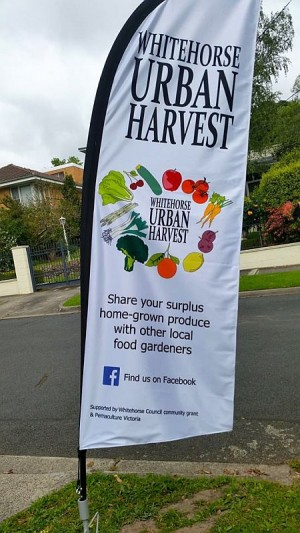 Box Hill South Urban Harvest