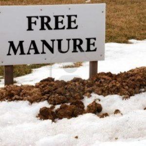 manure