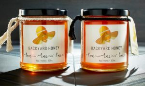 Backyard Honey