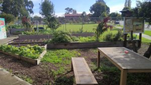 East Reservoir Community Garden