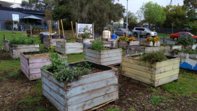 Doncaster Hill Community Garden