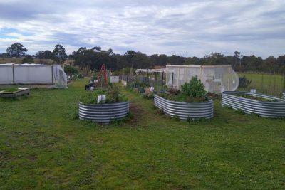Mernda Community Garden