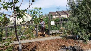 Merri Corner Community Garden