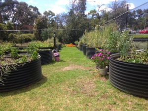 Eastland Multicultural Community Garden