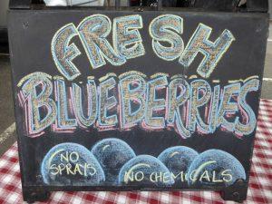 Kinglake West Blueberries