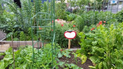 Richmond Community Garden Group