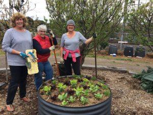 Rushall Community Garden