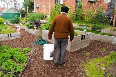 Balam-Balam Community Garden