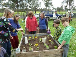 Bellfield Community Garden