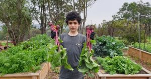 Willsmere Kitchen Garden