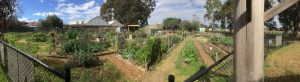 West Brunswick Community Garden and Food Forest
