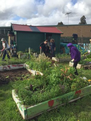 Fairfield Community Garden