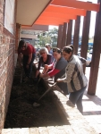 Adding manure
