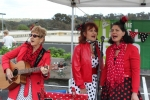 The Jam Tarts Trio (Heather, Kas and Lorraine), from the Dandenong Ranges, sing harmonies and love songs from the 50's, 60's and 70's, accompanied by guitar and ukelele.