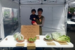 Pia Sappl sold biscuits, Tokyo greens, lettuce salad and mustard salad.