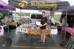 Melbourne Gourmet Mushrooms