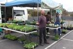 PEACE Farm Organic Nursery