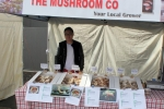 The Mushroom Co